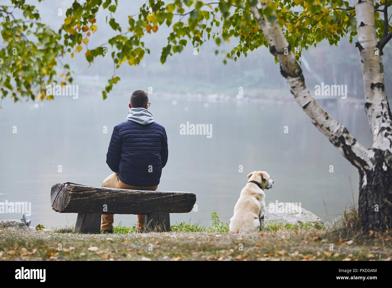 Pensive man with dog is contemplation on wooden bench near pond in autumn nature. - Stock Image