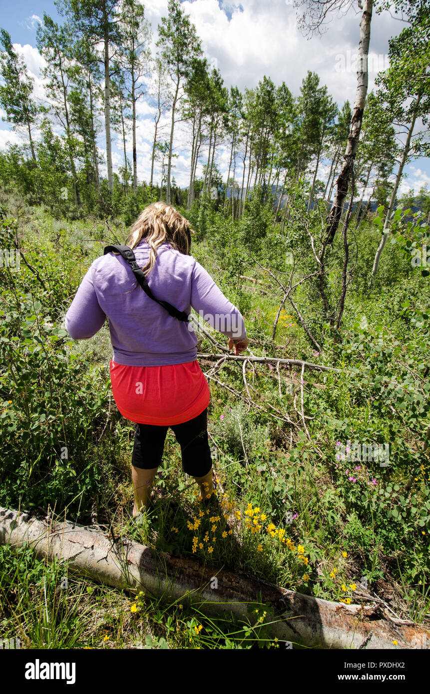 Cautious woman tries to hike in the wilderness wearing the wrong gear and clothing, only flip flops and capri pants - Stock Image