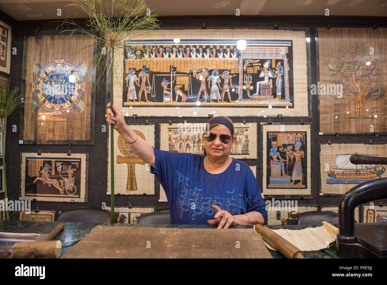 Giza, Egypt. 20th Oct, 2018. A shop assistant shows the papyrus plant which is used for making papyrus at a souvenir shop in Giza, Egypt, on Oct. 20, 2018. Made from papyrus plant stems, the papyrus was used for writing and drawing on by ancient Egyptians thousands years ago. Nowadays, with the ancient Egyptian writings and Pharaonic drawings, papyrus has always been an interesting souvenir bought by tourists in Egypt. Credit: Meng Tao/Xinhua/Alamy Live News - Stock Image