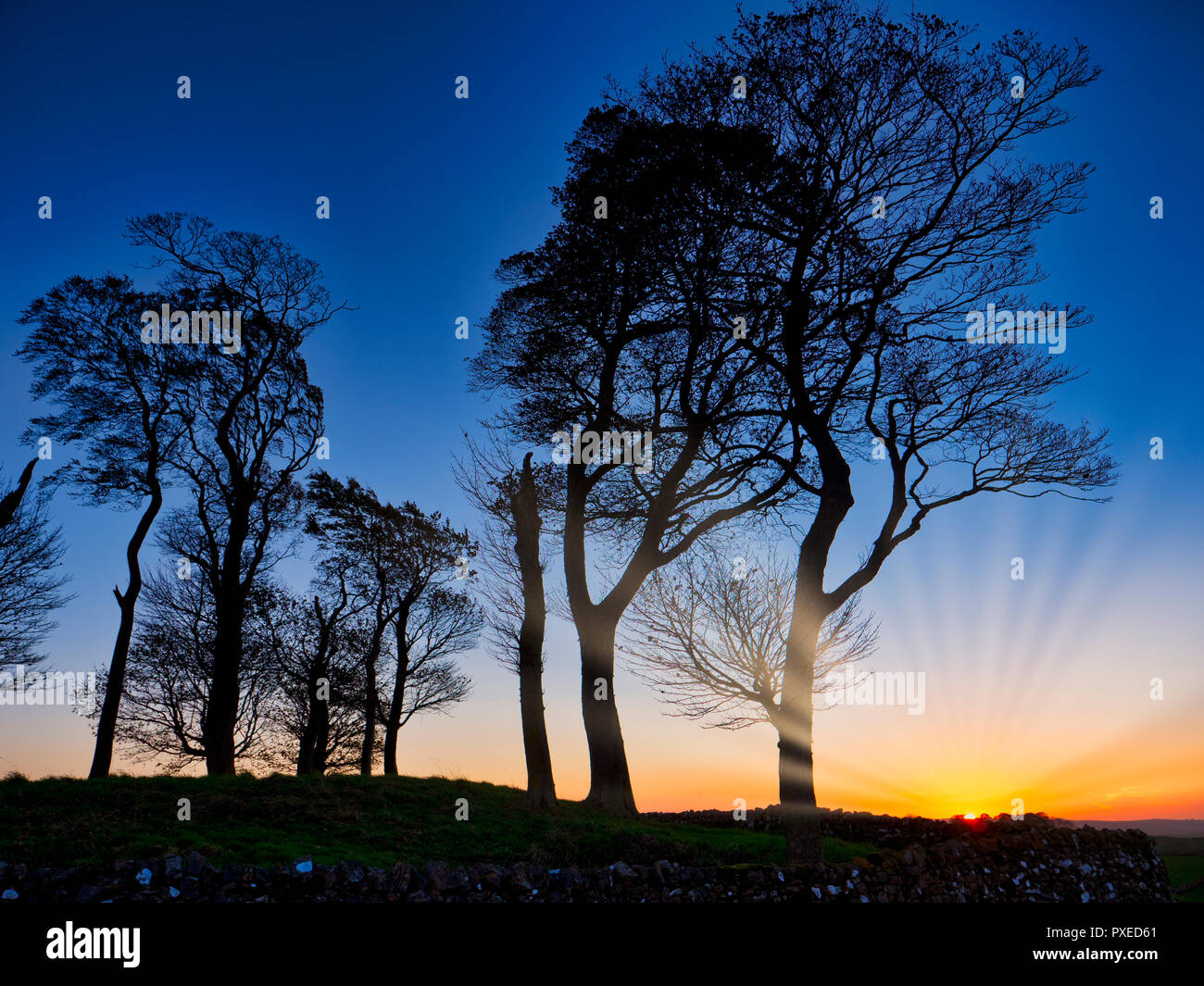 Tissington, UK. 22nd Oct, 2018. UK Weather: Moat Low Derbyshire spectacular sunset over the Bronze Age Round Barrow near Tissington in the Peak District National Park Credit: Doug Blane/Alamy Live News Stock Photo