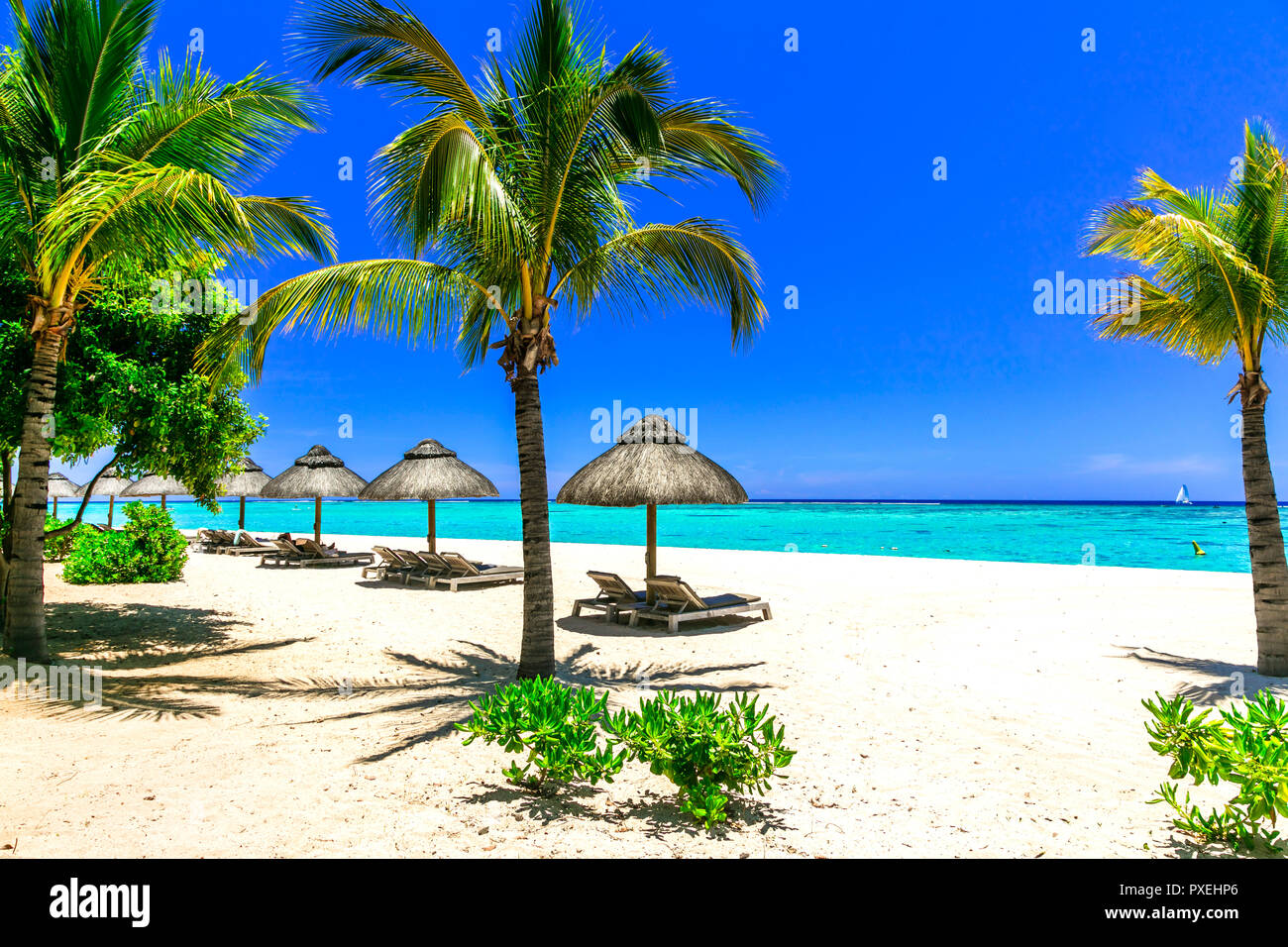 Tropical paradise in Mauritius island. - Stock Image