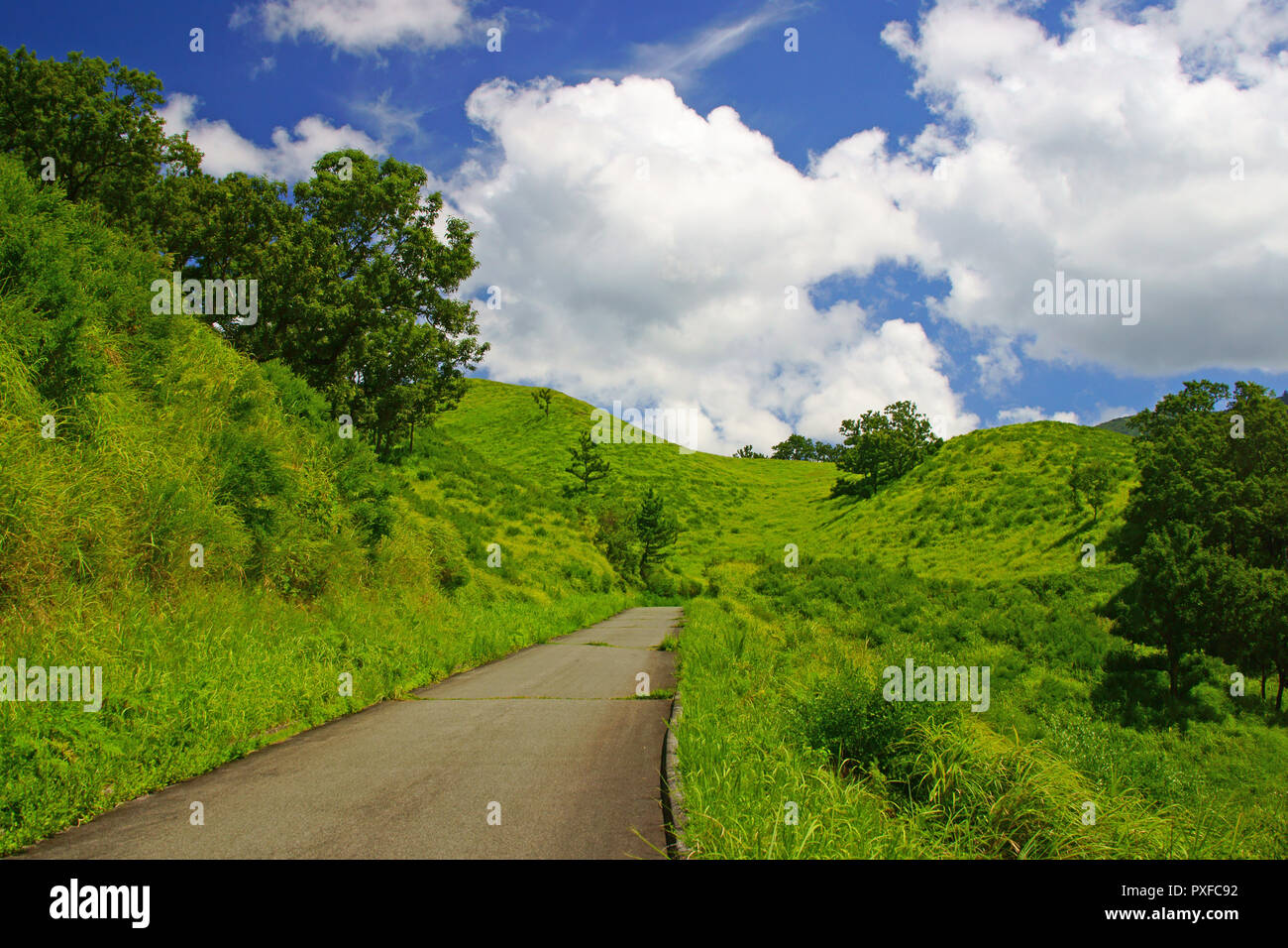 Cumulonimbus and Mountain Trail - Stock Image
