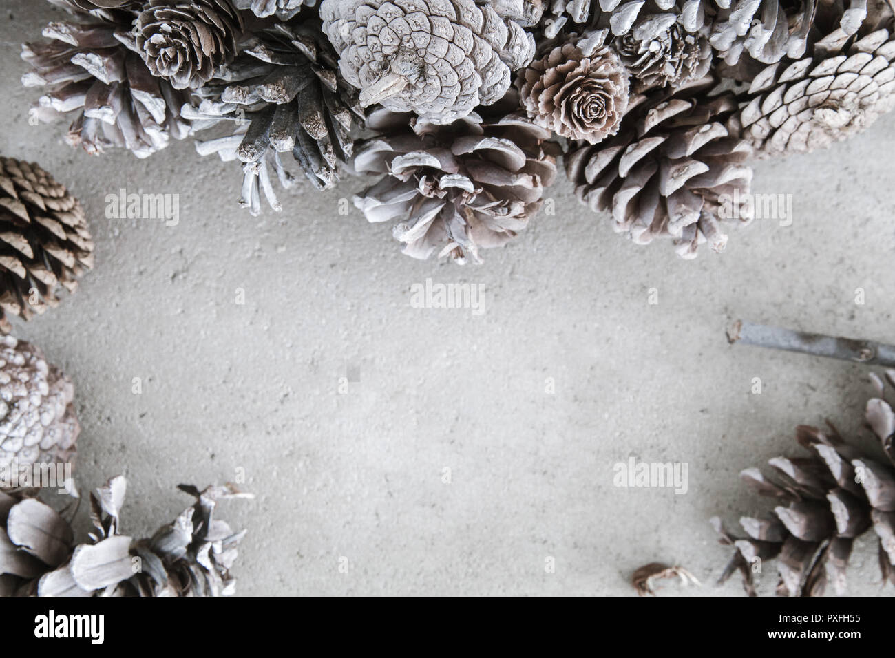 Christmas background with pinecones - Stock Image