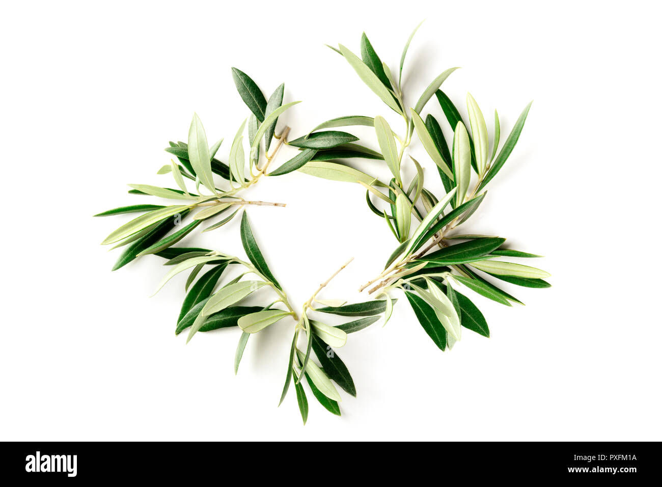 An overhead photo of a wreath made up of olive tree branches, a circular frame with copy space, shot from above on a white background - Stock Image