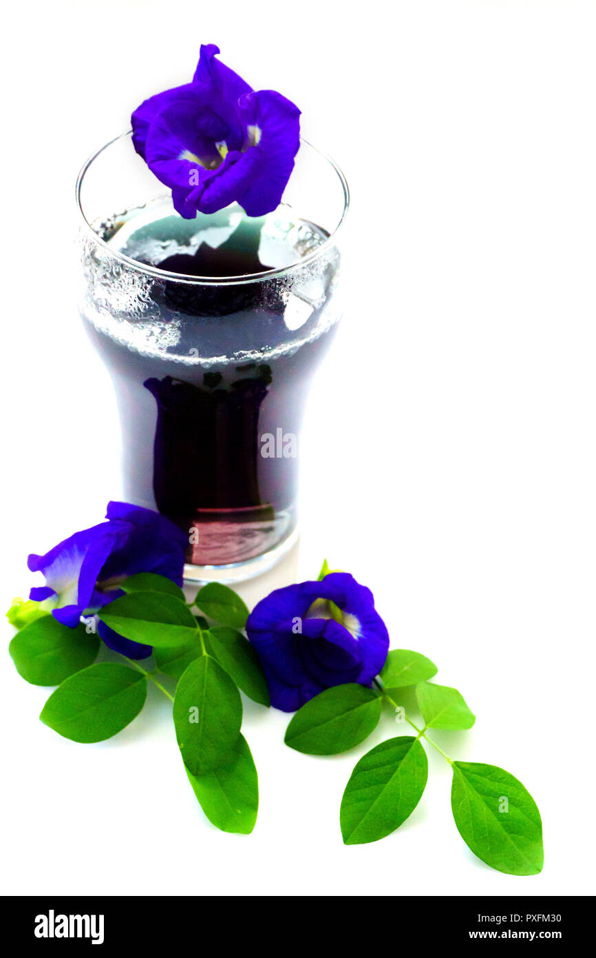 Refreshing Drink of Butterfly Pea Flower,Butterfly Pea Juice. - Stock Image