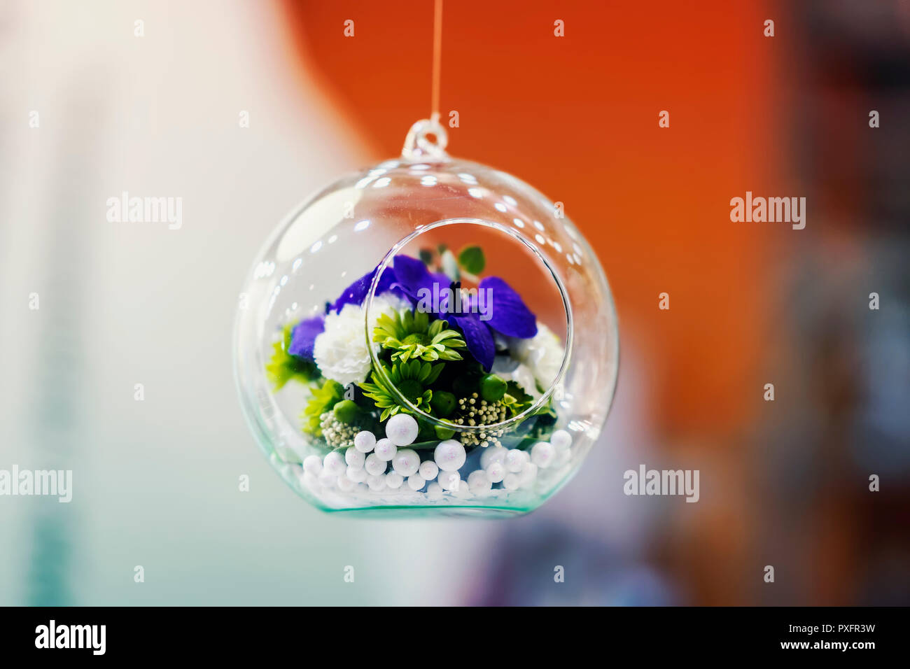 Hanging glass ball, bubble with colorful flowers inside, bright white and red background, decoration, stylish floristry Stock Photo