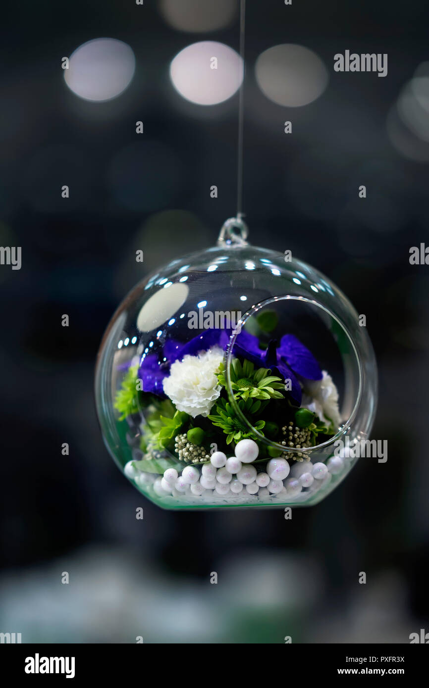 Hanging glass ball, bubble with colorful flowers inside, dark background, bokeh, decoration, stylish floristry - Stock Image