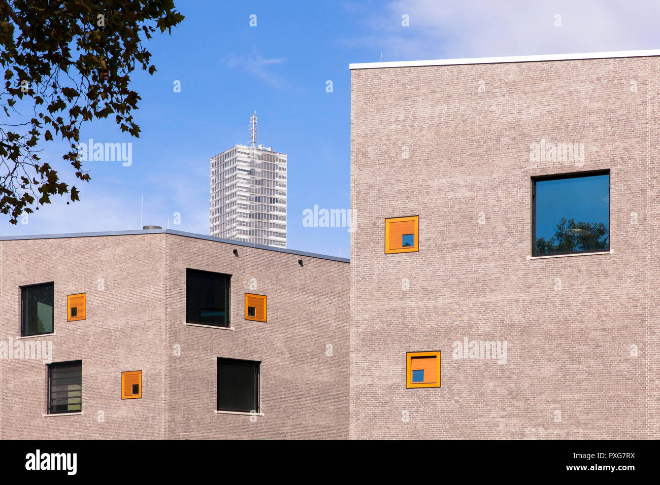 building of the school campus Bildungslandschaft Altstadt Nord (BAN) near the Klingelpuetz park, architect Gernot Schulz, in the background the Cologn - Stock Image