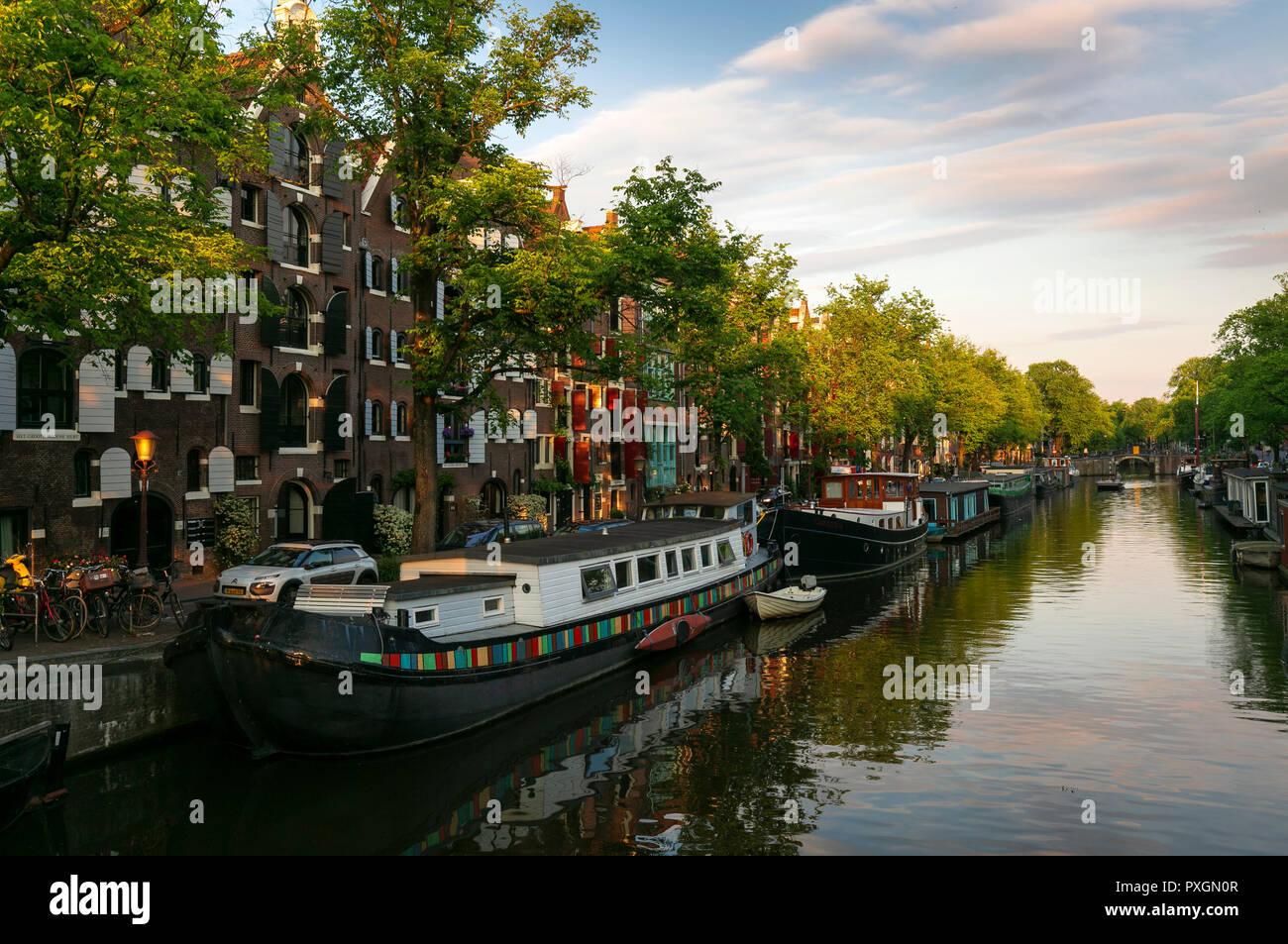 Spring scene in Amsterdam city - Stock Image