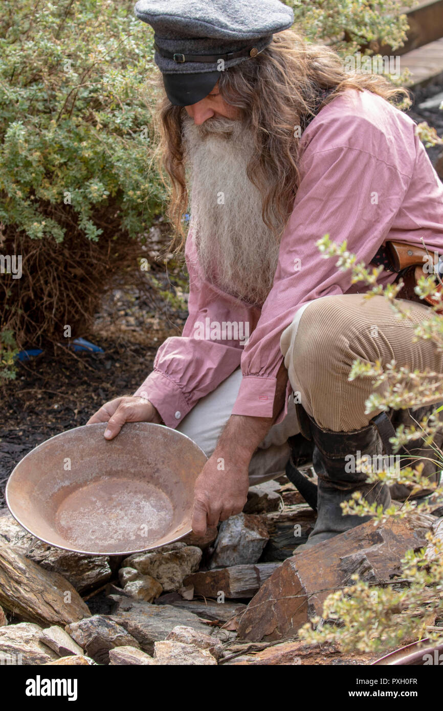 Portrait of an old 1800s prospector panning for gold - Stock Image