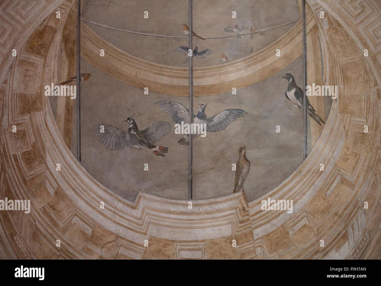 Detail of a renaissance ceiling fresco in the garden pavilion of Villa Lante. The fresco shows lifelike birds against a false-perspective dome. - Stock Image