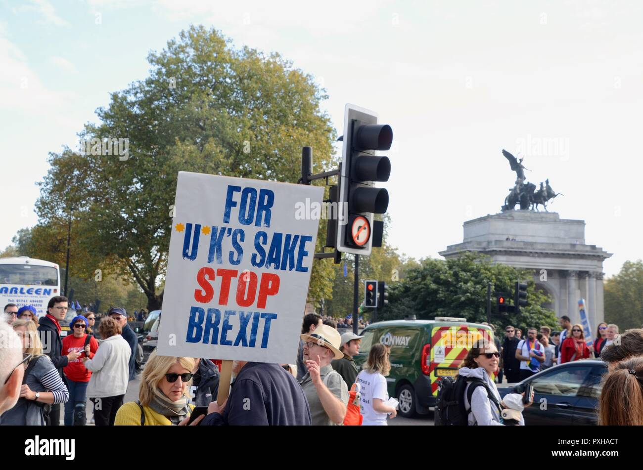 for fucks sake stop brexit placard at the peoples vote march in london october 20th 2018 Stock Photo