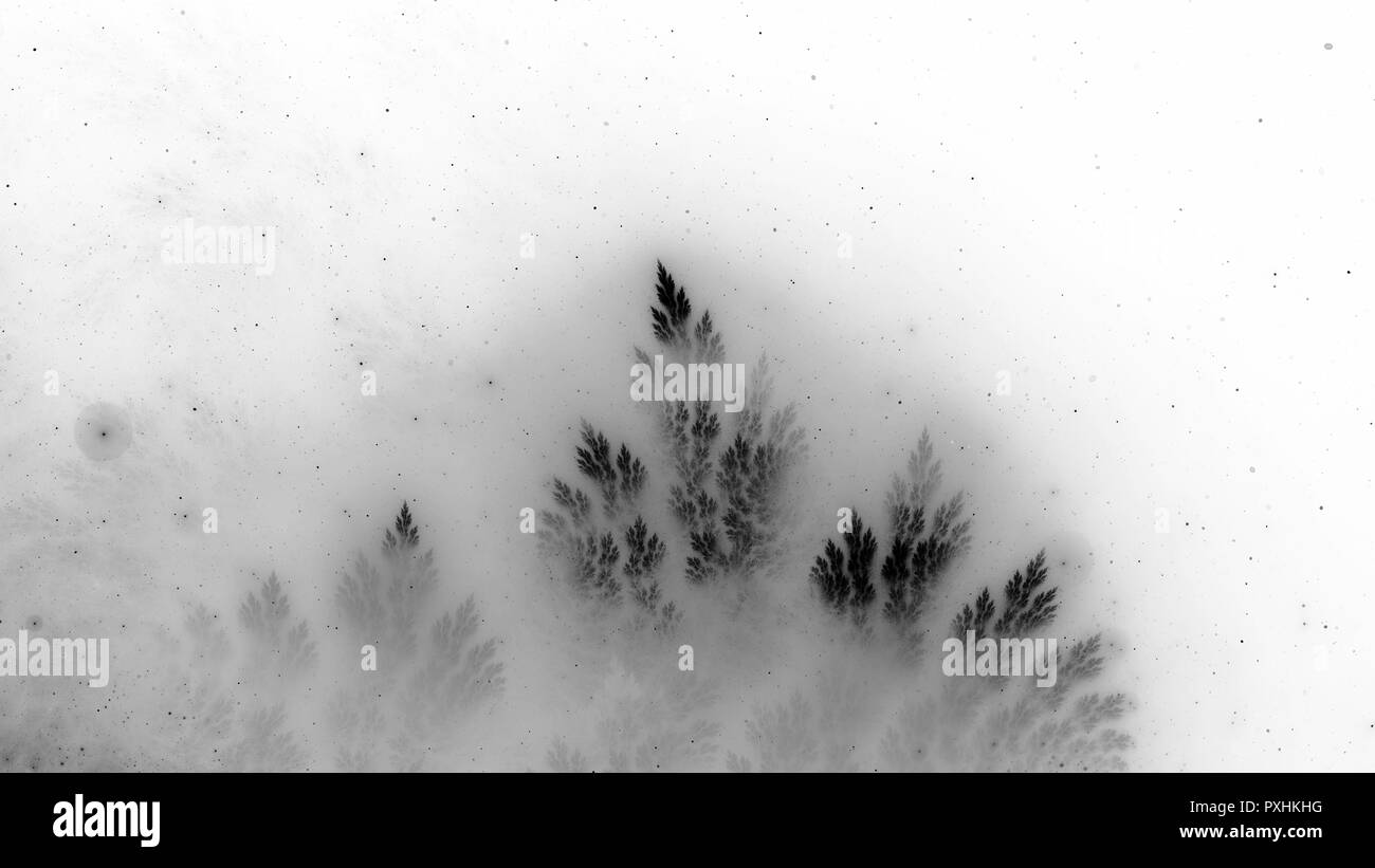 Christmas Tree Branch Black and White Stock Photos & Images - Alamy