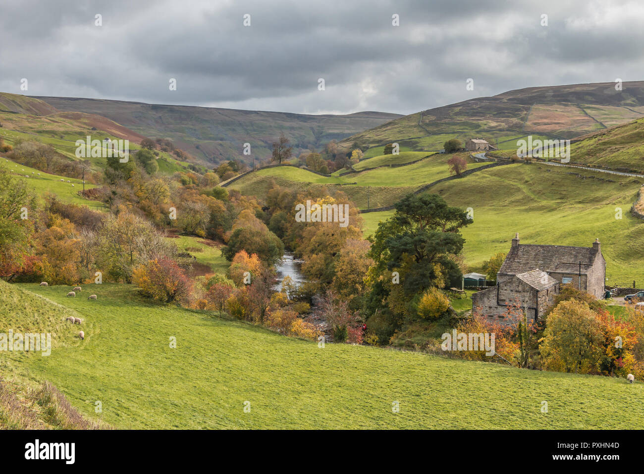 Yorkshire Dales National Park autumn landscape, Park House and River Swale, Keld, Upper Swaledale, UK Stock Photo