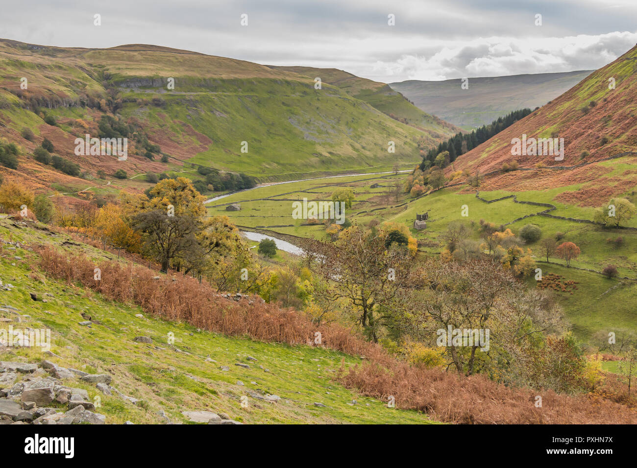 Yorkshire  Dales National Park autumn landscape, the River Swale between Keld and Muker, on the Coast to Coast long distance footpath, Swaledale, UK Stock Photo