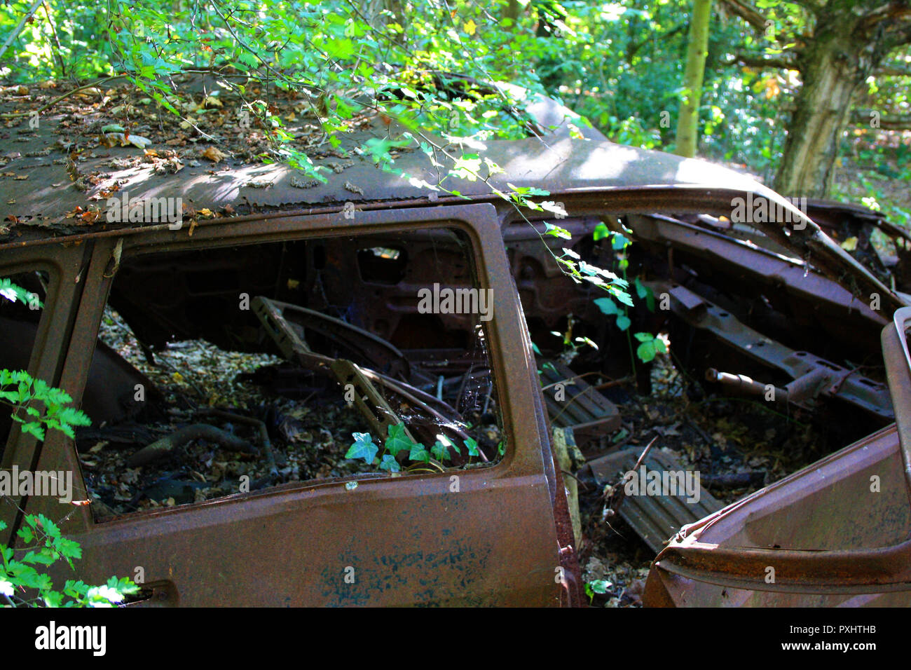 A rusty abandoned car in woods, Essex, England - Stock Image