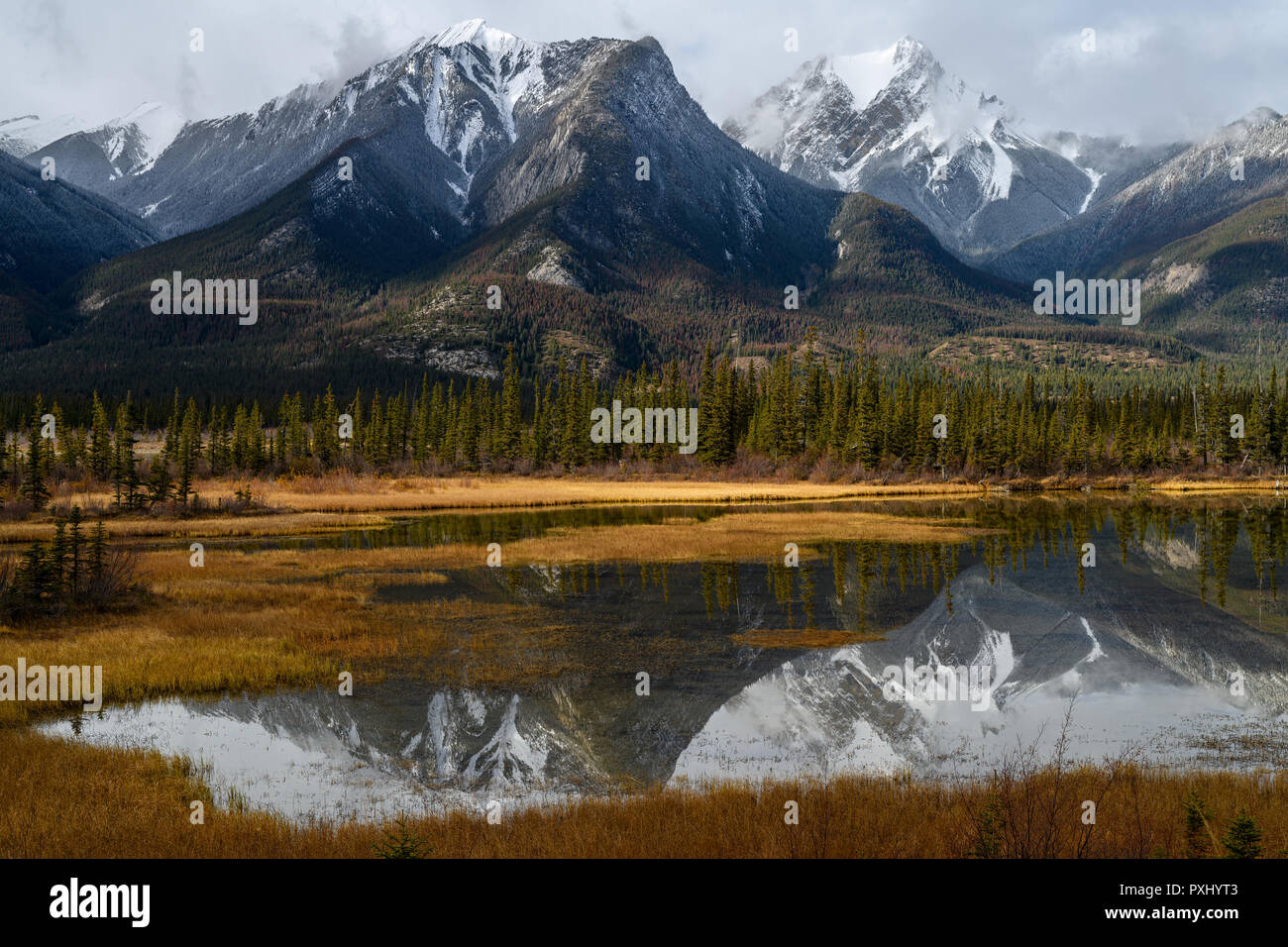 Whitecap Stock Photos & Whitecap Stock Images - Alamy