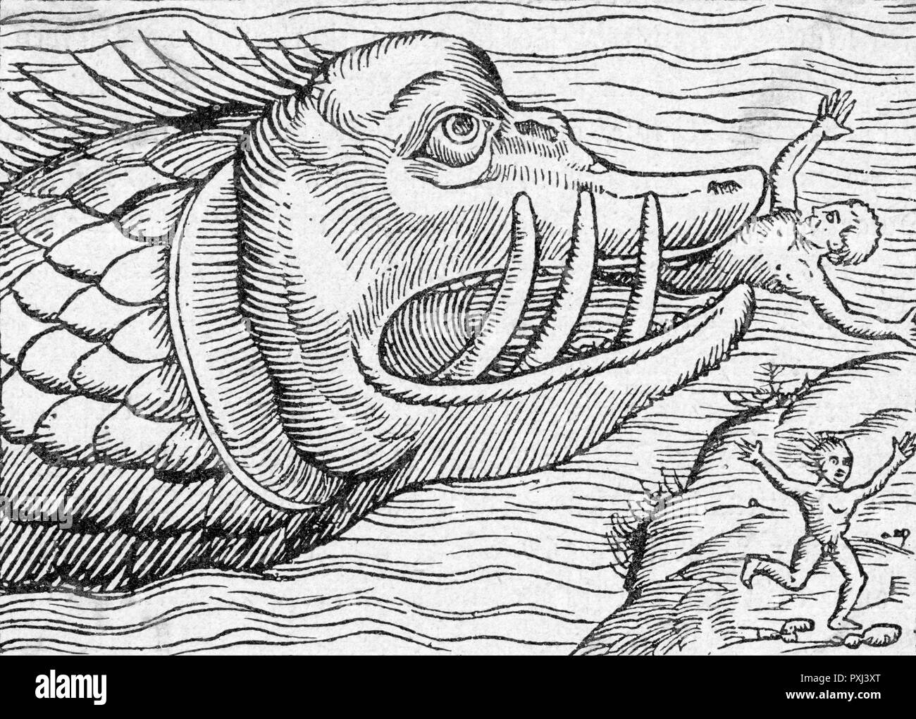 A sea-monster grabs a victim from the shore, while his cowardly companion runs away instead of tackling the brute      Date: 1550 - Stock Image
