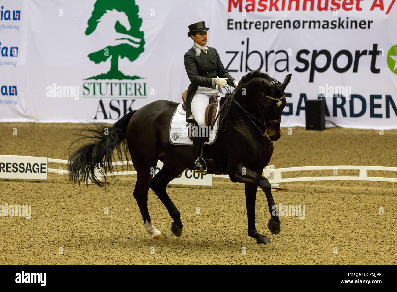 Herning, Denmark. 21st October, 2018. Tinna Vilhrlmson of Sweden riding Don Aiurella  during the FEI World Cup 2018 in freestyle dressage in Denmark. Credit: OJPHOTOS/Alamy Live News Stock Photo