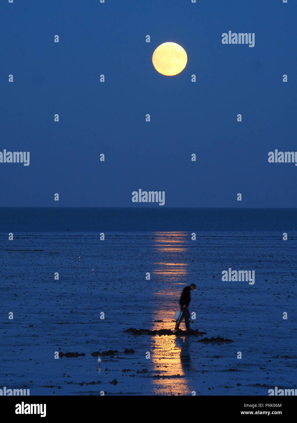 Minster on sea, Kent, UK.  23rd Oct, 2018. UK Weather: this evening's almost full moon rising in Minster on sea, Kent. Credit: James Bell/Alamy Live News - Stock Image