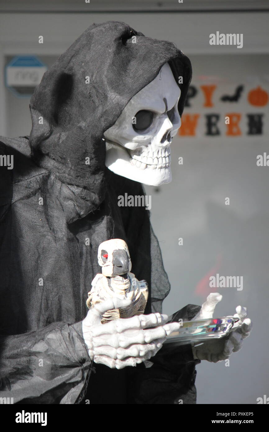 The Grim Reaper holding a bird skeleton in his hand as an