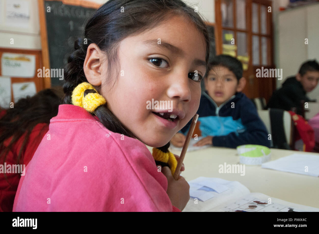 Mapuche language lesson in the school of the native Mapuche communities El Salitral. Preserve and pass on the knowledge of the language serves to main - Stock Image