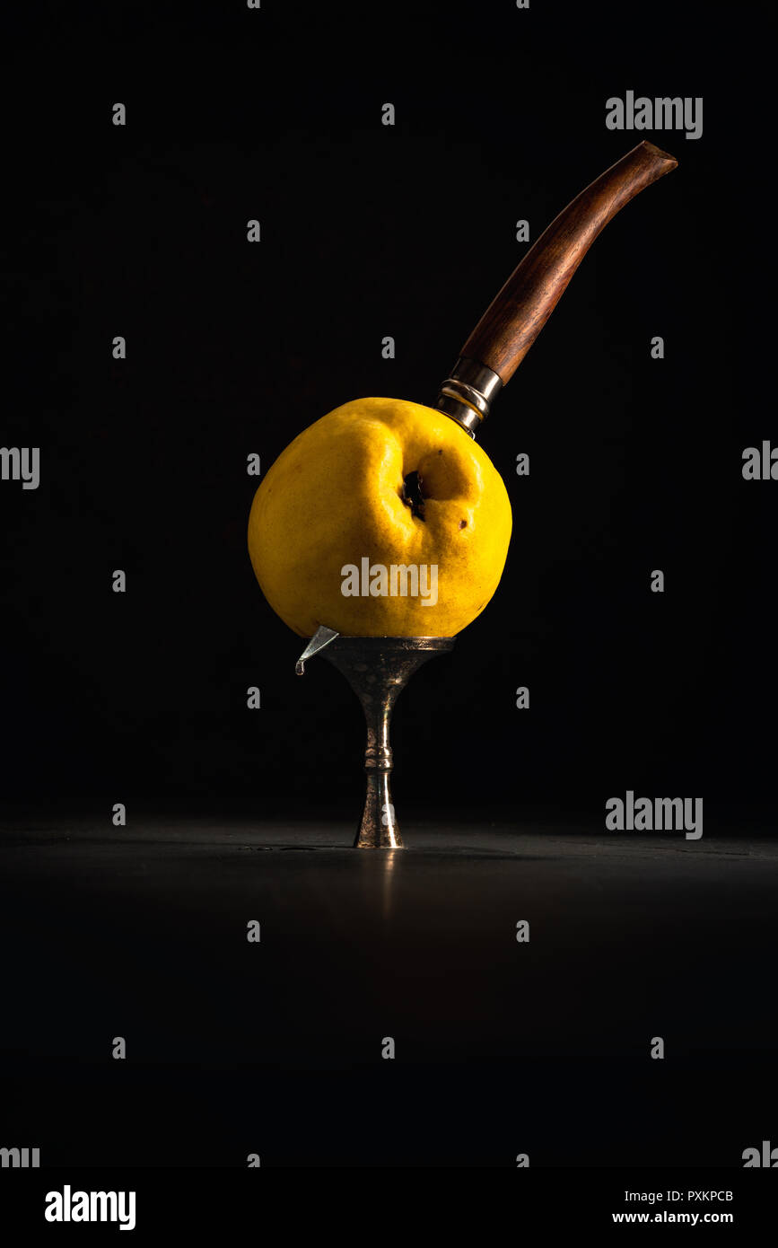 Quince fruit with knive (Cydonia oblonga) in the style of Chiaroscuro or dutch master painting - Stock Image