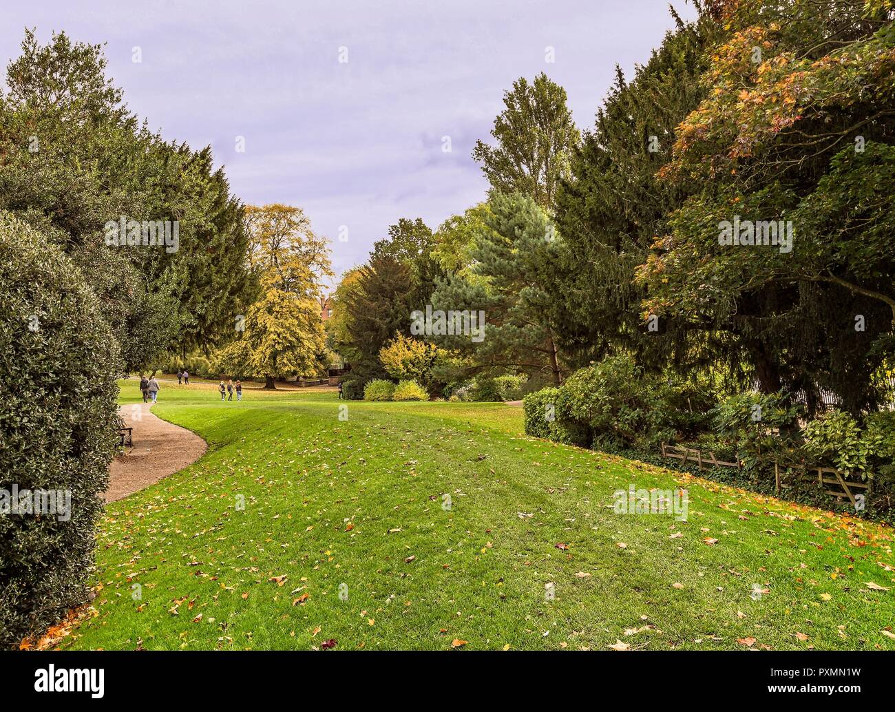 Early autumn in Museum Gardens in York. Leaves litter the ground as people walk through the gardens.  Trees surround the scene. Stock Photo