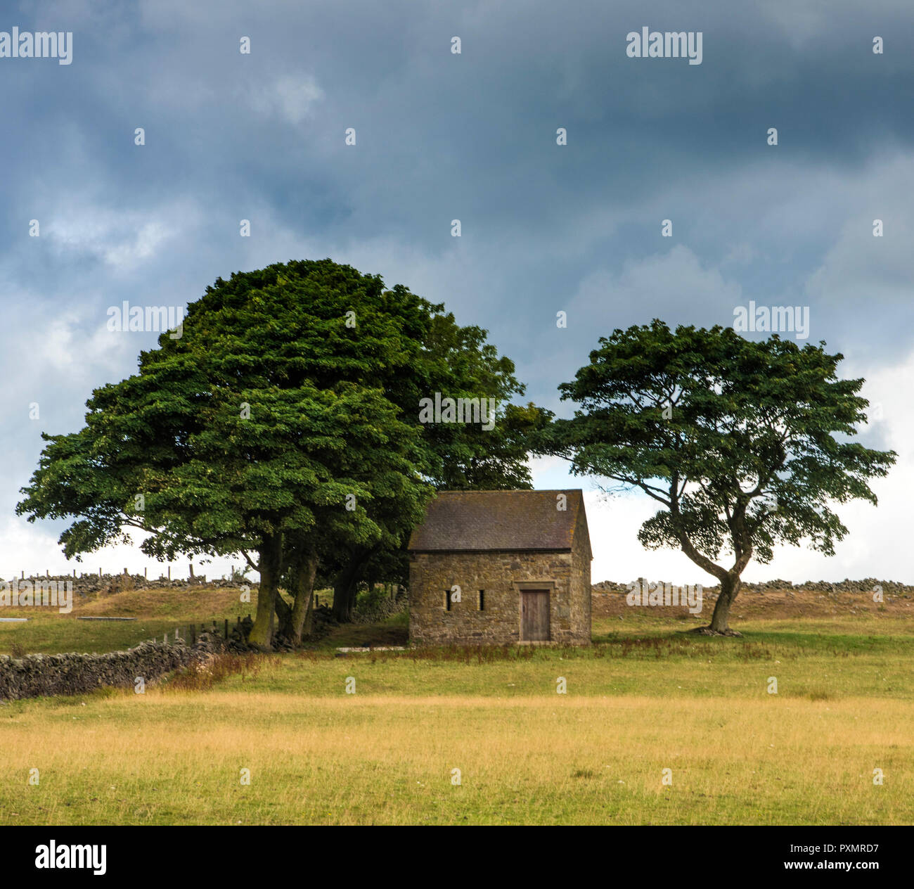 An old brick built barn shaded by mature trees in the Derbyshire Peak District. England UK - Stock Image