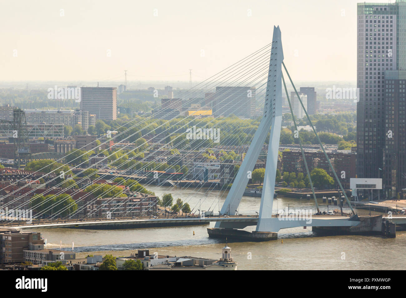 aerial view of the Erasmus bridge on the river Nieuwe Maas in the center of Rotterdam in the Netherlands Holland Stock Photo