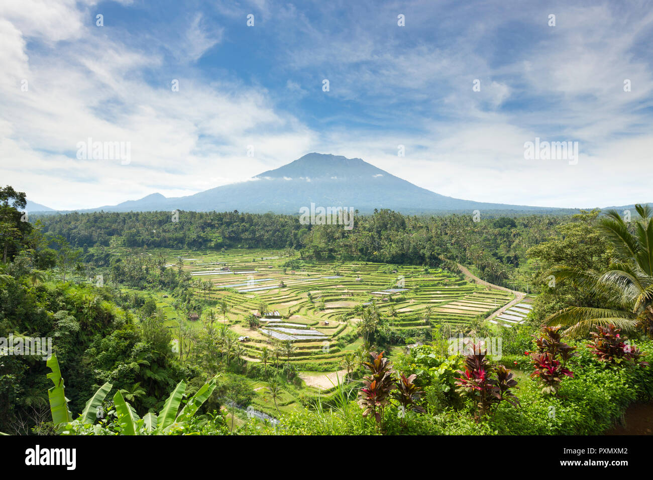 View of rice terraces and Gunung Agung volcano, Rendang, Bali, Indonesia - Stock Image