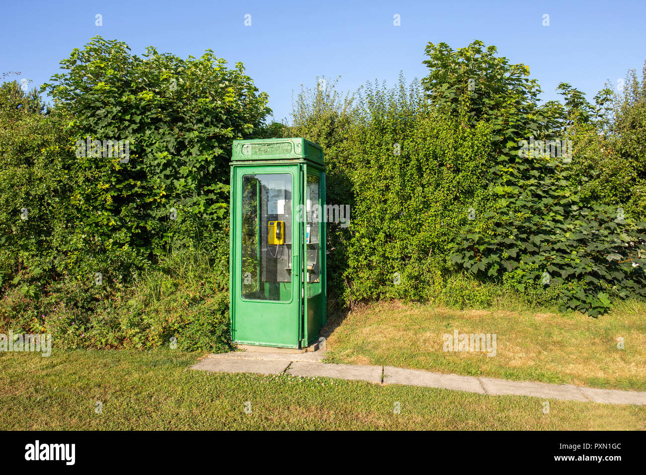 Green painted telephone box on a campsite in Wales UK - Stock Image