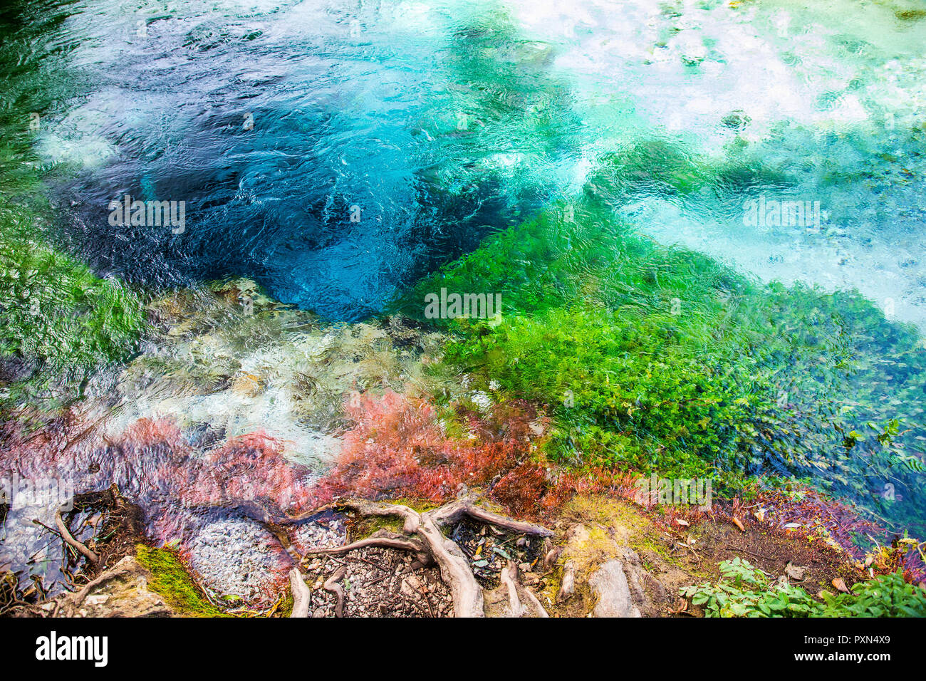The Blue Eye - Syri i Kaltër, water spring near Muzinë in Vlorë County, southern Albania, Europe - Stock Image