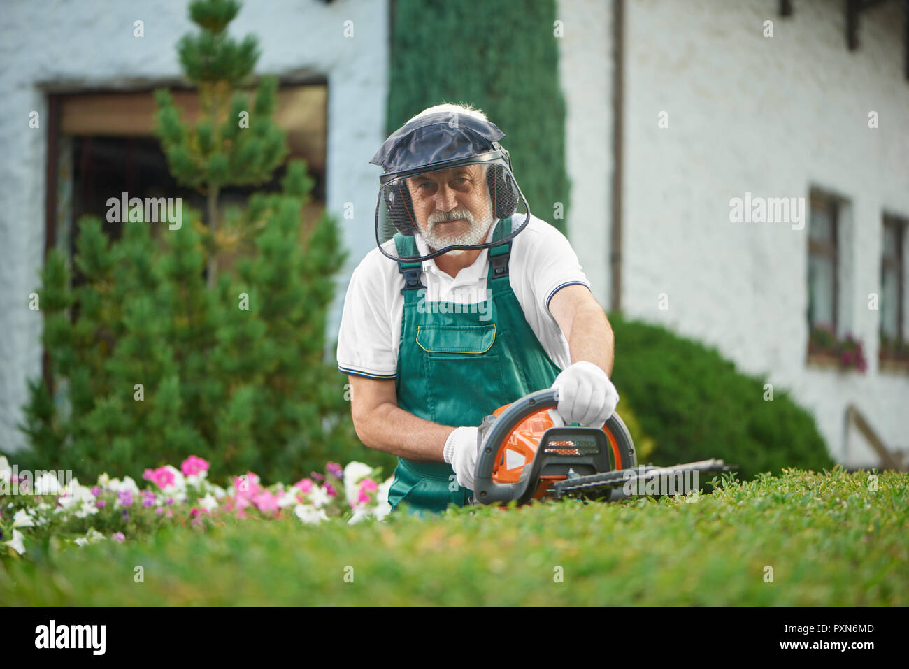 Adult man wearing in green overalls with safety mask and protective headphones landscaping bushes with petrol hedge cutter. Male gardener working with professional equipment and looking at camera. - Stock Image