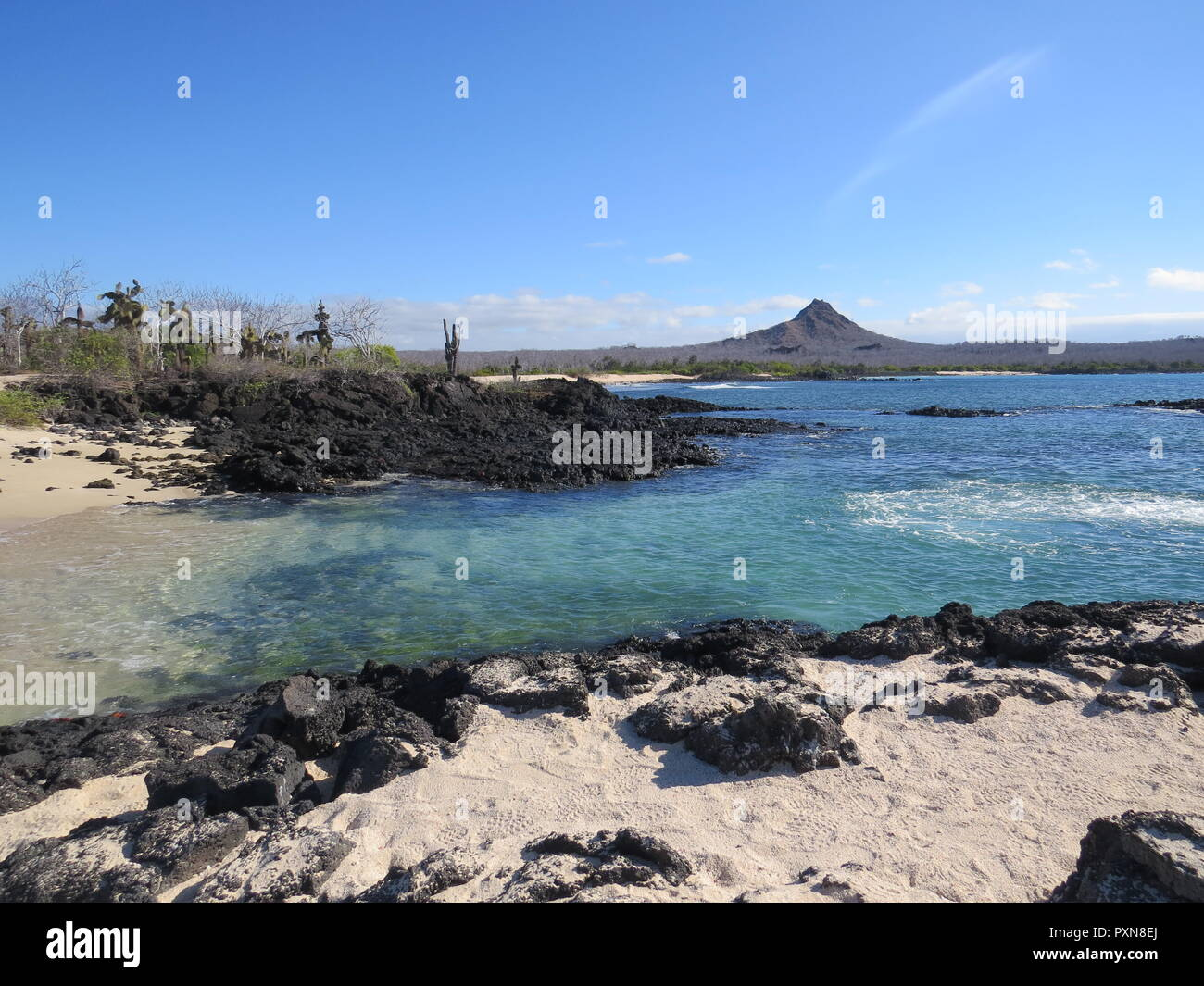 Rocky volcanic beach with inactive volcano in background, Galapagos landscape - Stock Image