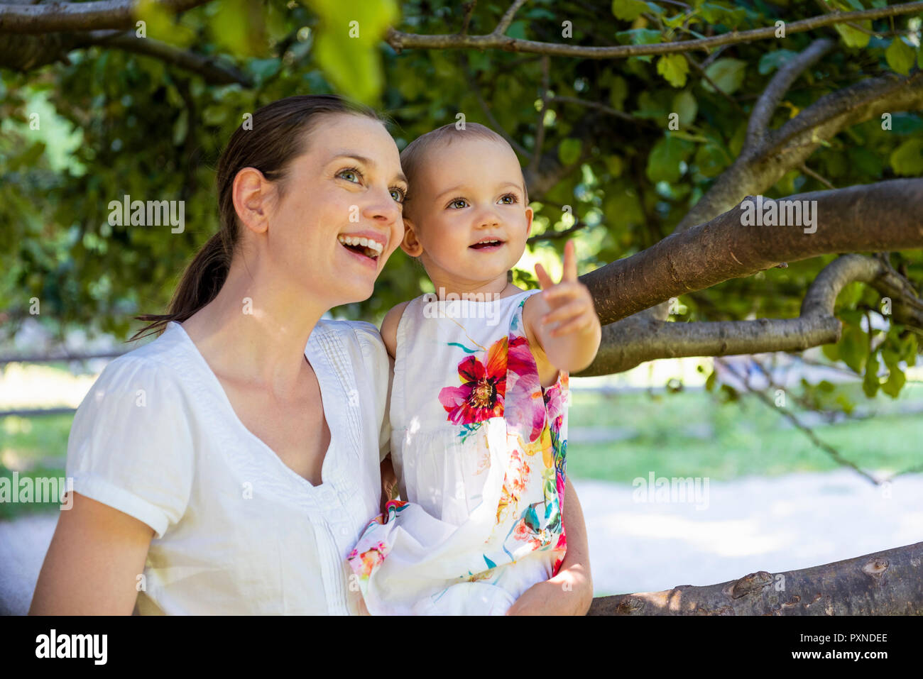 Happy mother and little daughter under a tree discovering something - Stock Image