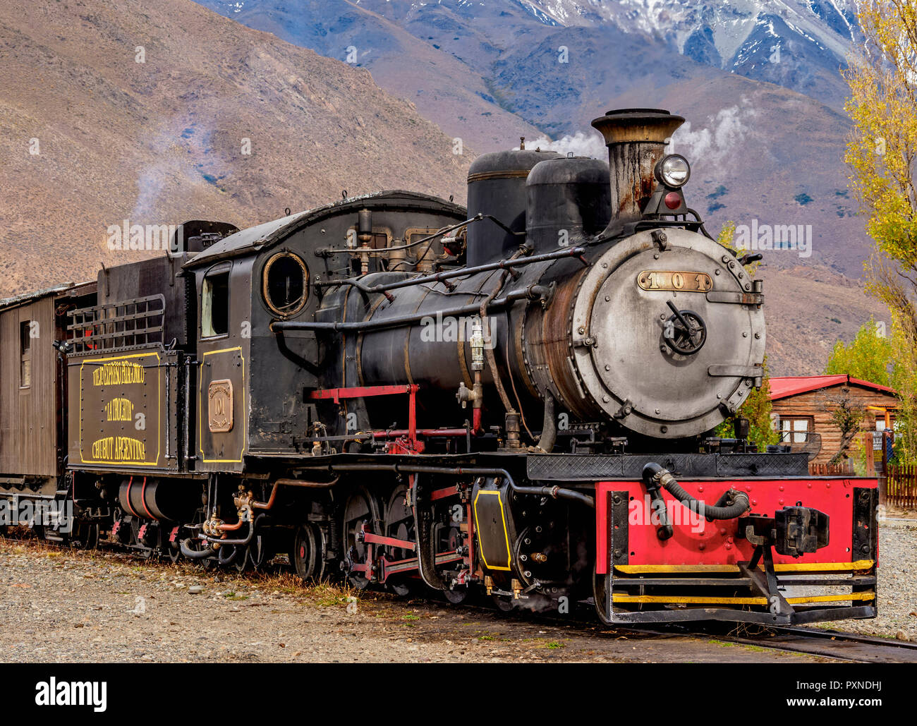 Old Patagonian Express La Trochita, steam train, Nahuel Pan Train Station, Chubut Province, Patagonia, Argentina - Stock Image