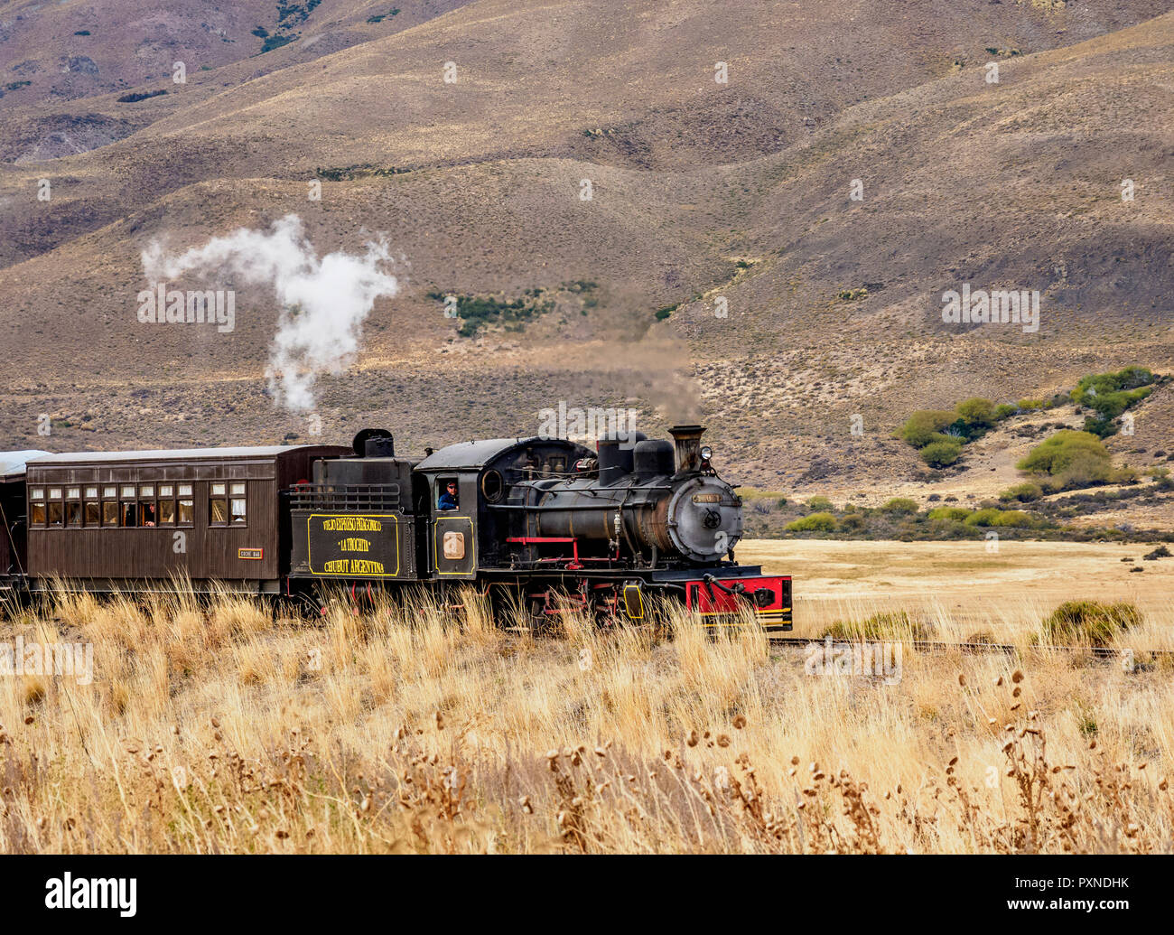 Old Patagonian Express La Trochita, steam train, Chubut Province, Patagonia, Argentina - Stock Image