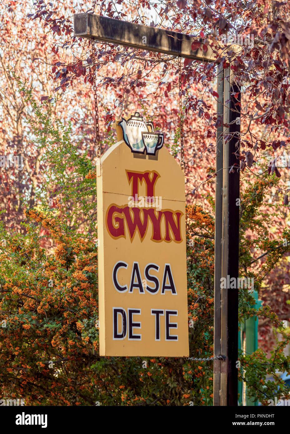 Welsh Tea House Ty Gwyn, Gaiman, The Welsh Settlement, Chubut Province, Patagonia, Argentina - Stock Image