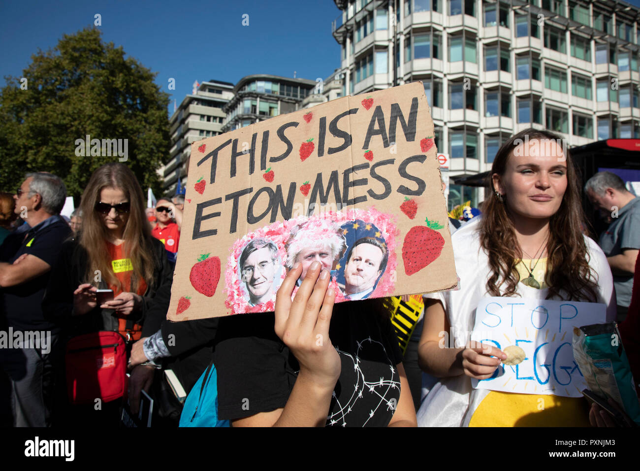 The People's Vote March For The Future on 20th October 2018 in London, United Kingdom. More than an estimated 500,000 people marched on Parliament to demand their democratic voice to be heard in a landmark demonstration billed as the most important protest of a generation. As the date of the UK's Brexit from the European Union, the protesters gathered in their tens of thousands to make political leaders take notice and to give the British public a vote on the final Brexit deal. Stock Photo