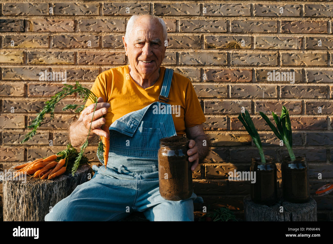 Smiling senior man with glass jars of soil and fresh carrots looking at camera - Stock Image