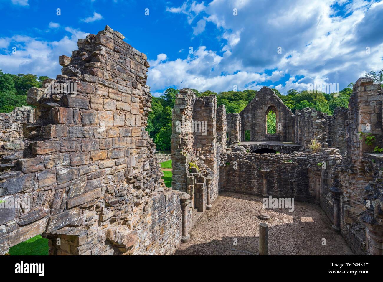 Finchale Priory, Durham, England, United Kingdom, Europe - Stock Image