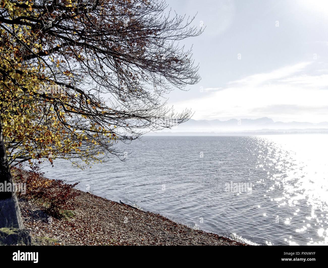 Germany, Bayern, Herbststimmung am Starnberger See - Stock Image