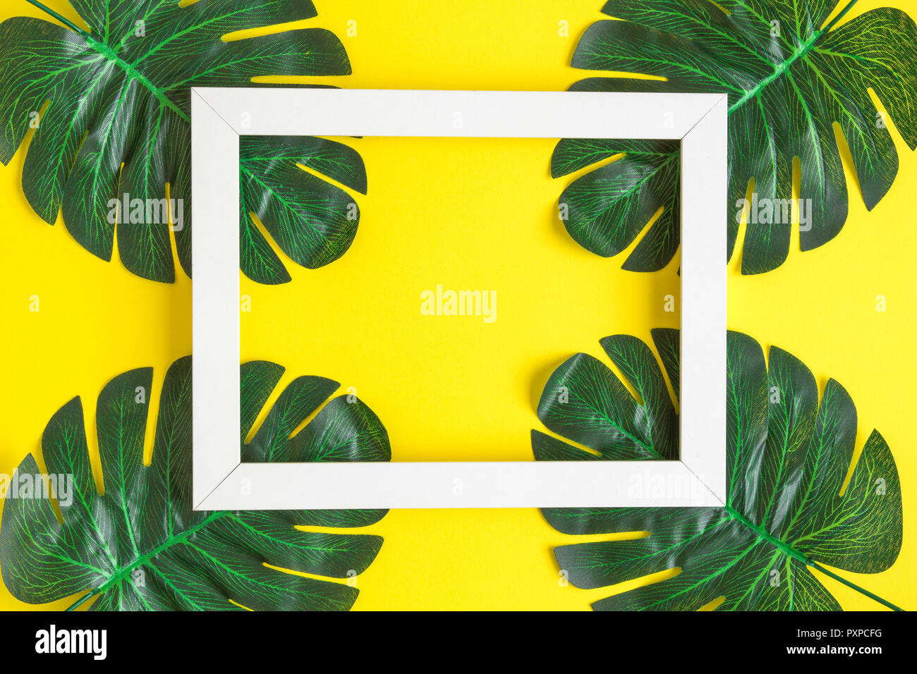 White Photo Frame With Tropical Palm Leaves Arrangement On Yellow Background Minimal Summer Concept Stock Photo Alamy Download the perfect tropical leaves pictures. https www alamy com white photo frame with tropical palm leaves arrangement on yellow background minimal summer concept image222998260 html