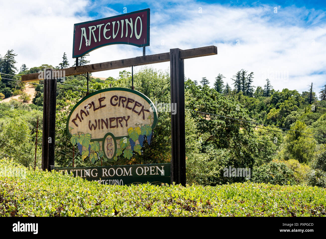 JULY 1 2018 - YORKVILLE, CALIFORNIA: Sign for the Maple Creek Winery, a winery and wine tasting room in the Anderson Valley area of California on a su - Stock Image