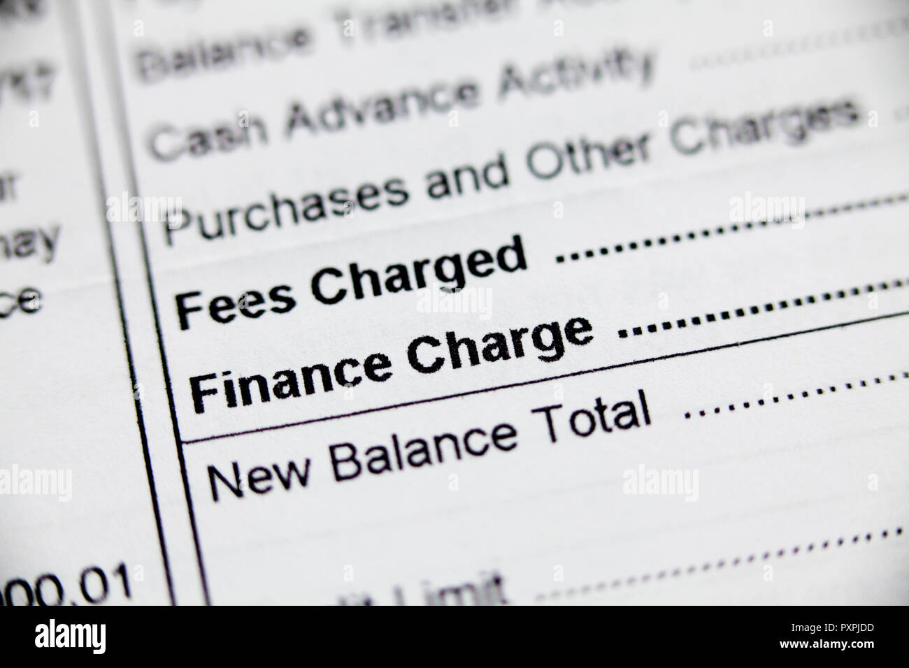 credit card fees and finance charge information on monthly statement