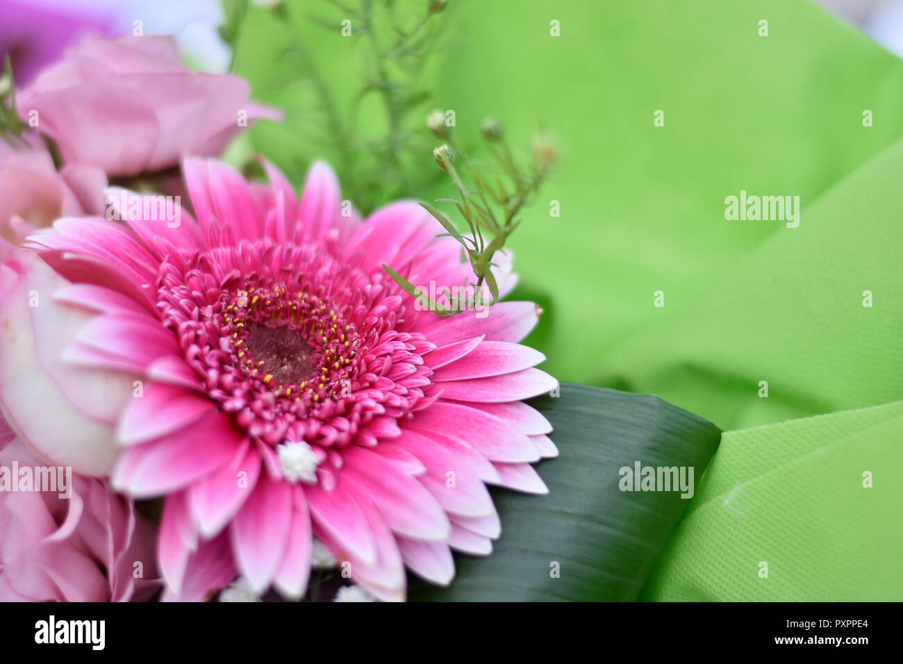 Flower composition. Florist concept - Stock Image