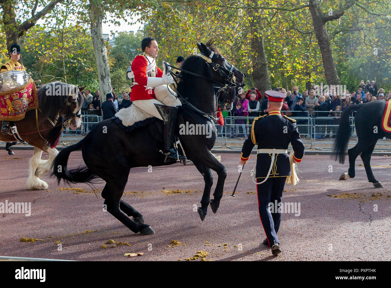 A Bucking Horse Makes Riding Difficult For A Guard At The King And Queen Of Holland S State Visit To The Uk Stock Photo Alamy