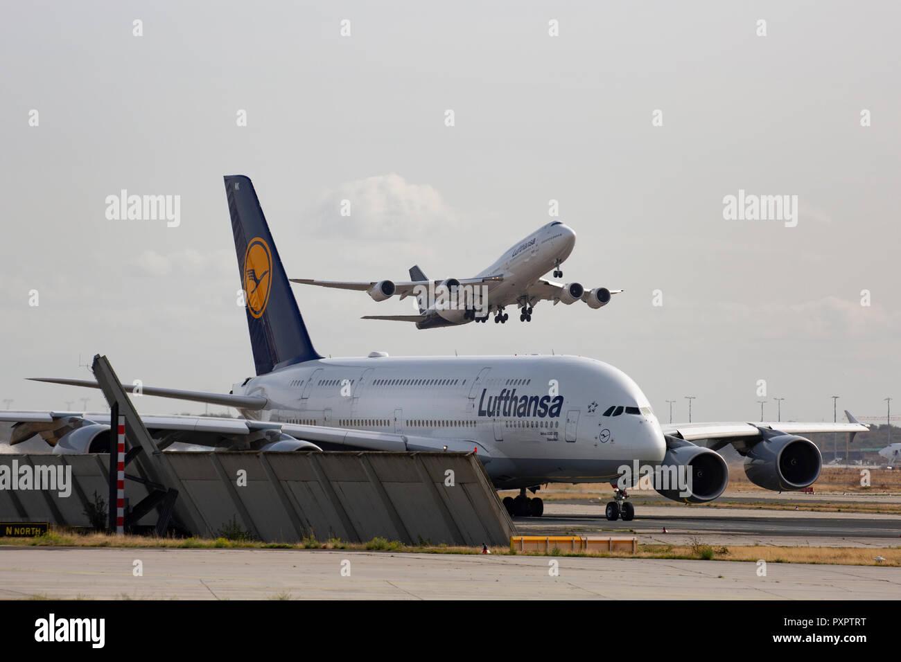 Airbus A380 800 Dsseldorf Lufthansa Am Flughafen Frankfurt Main FRA