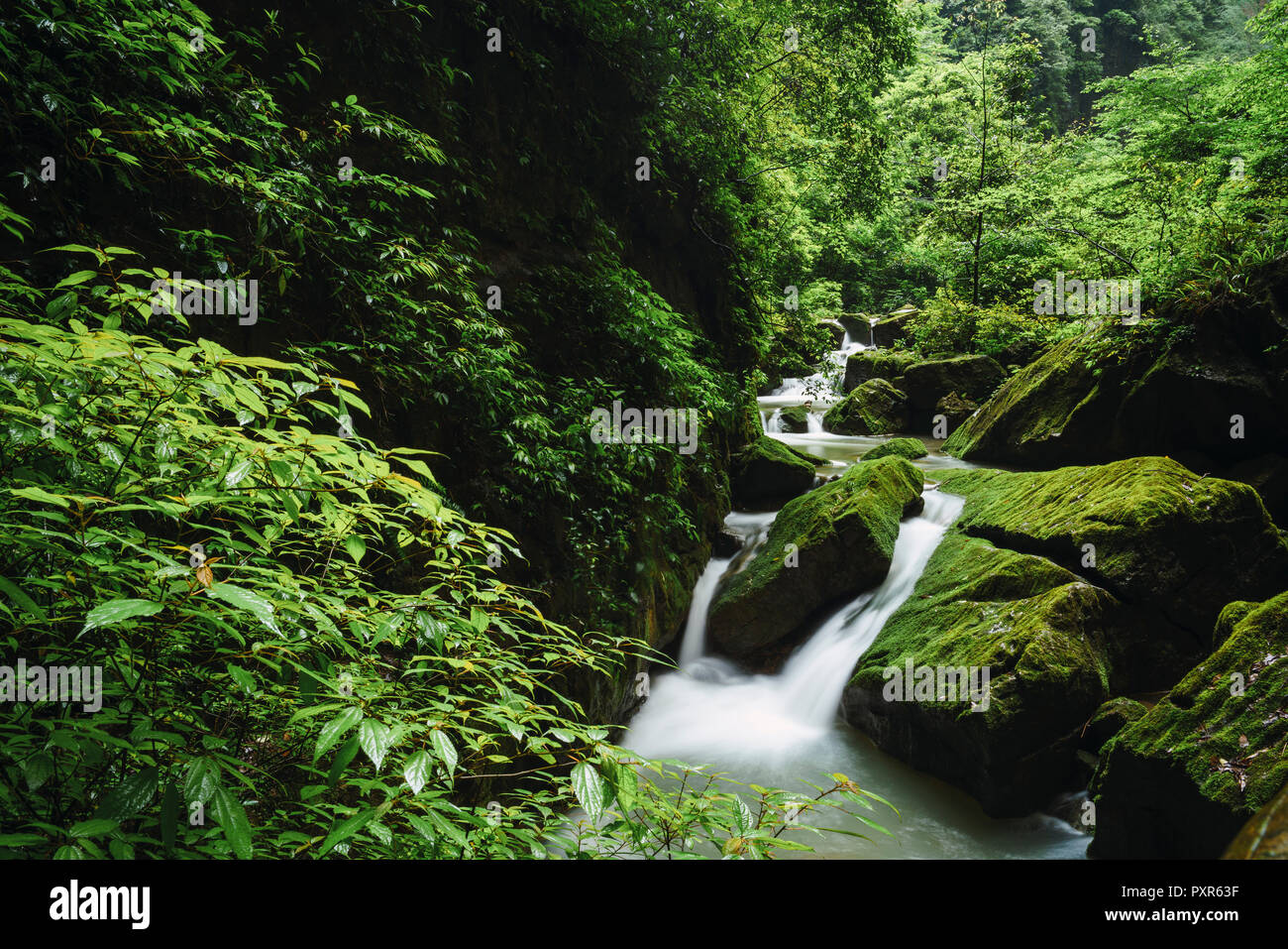 China, Sichuan Province, Wulong Karst National Geology Park Stock Photo
